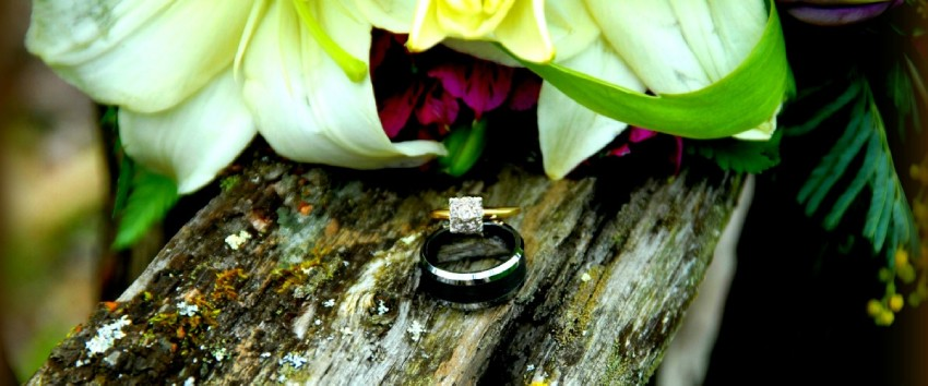 Welcome To Gatlinburg S Little Log Wedding Chapel Photography