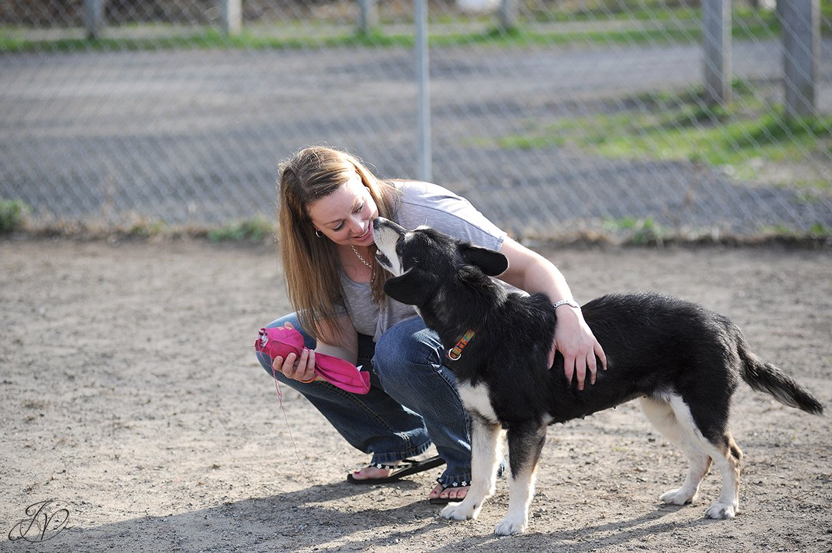 photo of rescue dog kissing rescuer