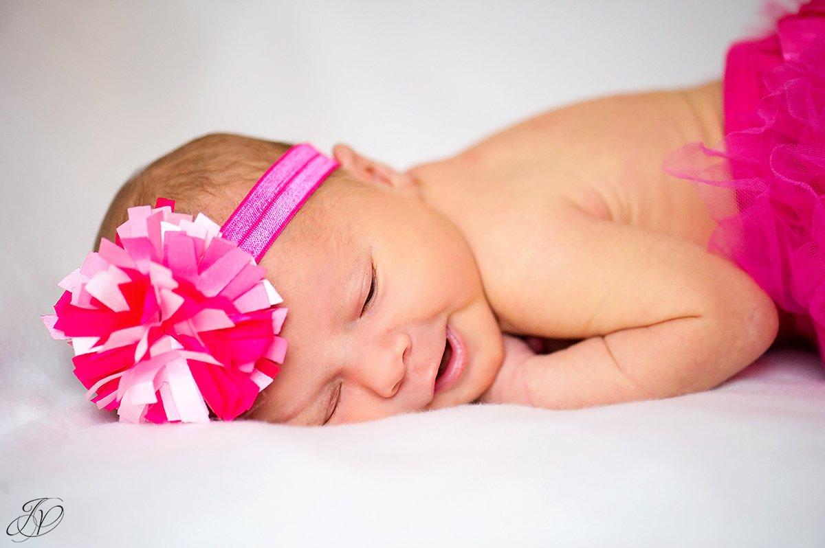 jessica painter photography albany newborn portrait photographer