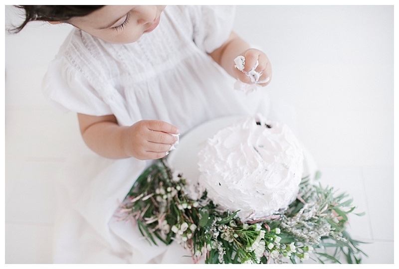 smash-the-cake-baby-photography