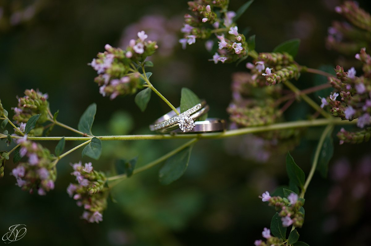 Unique wedding ring shot, with the rings on flowers