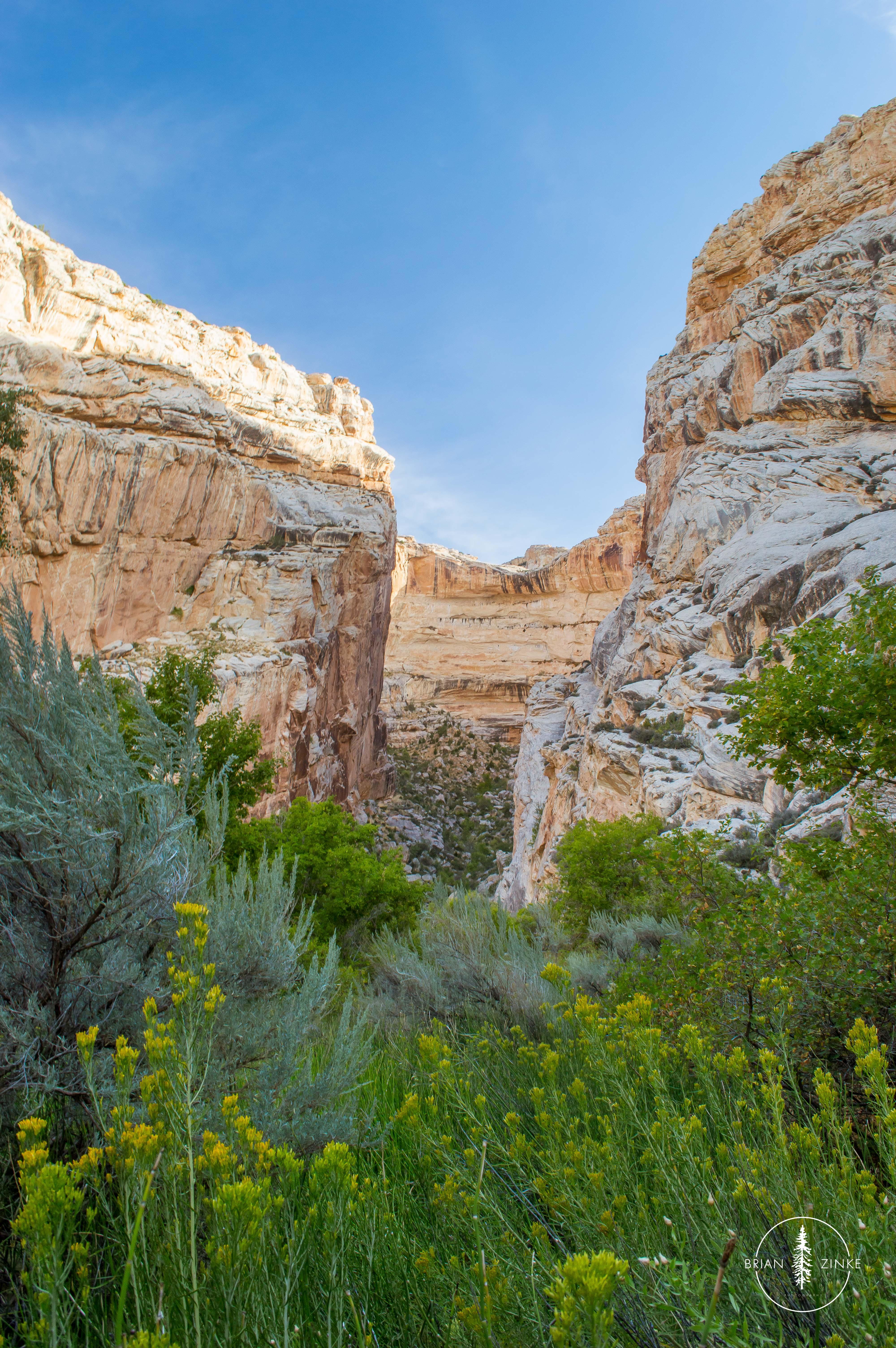 Box Canyon, Dinosaur National Monument, Vernal, Utah