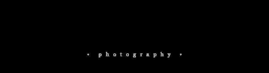 PhotoBiz LLC